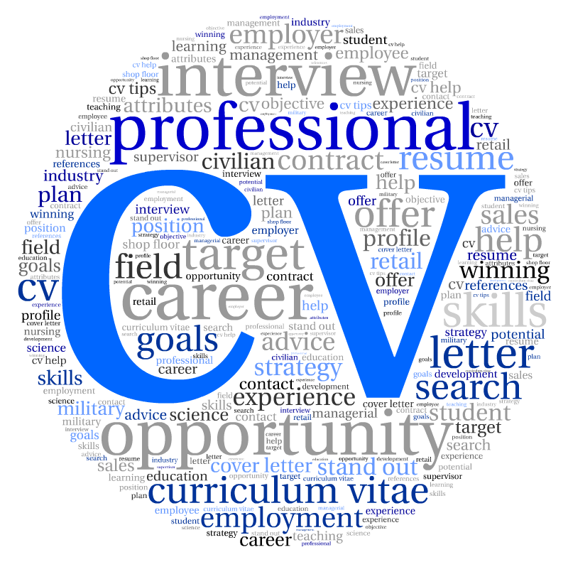 Reviews of the Top 10 UK CV Writing Services 2015