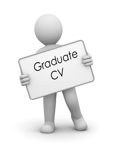 Cv writing service prices